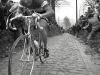 Moser destroys the cobbles